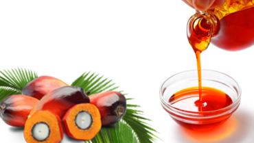 Lucruri mai putin stiute despre uleiul de palmier